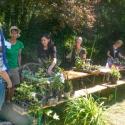 Biogarten-Stand