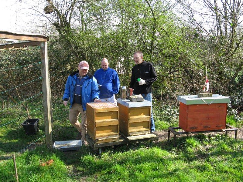Besuch des Bienensachverständigen
