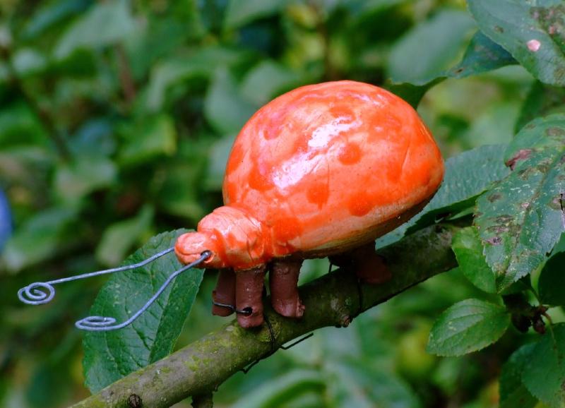 Käfer im Obstbaum