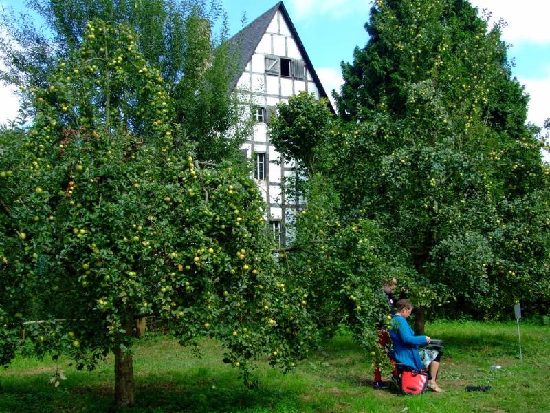 Pause unter Äpfeln