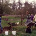 27)Obstbaumpflanzung, Wiese-Ost