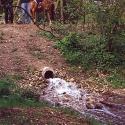 52)Wasser marsch!