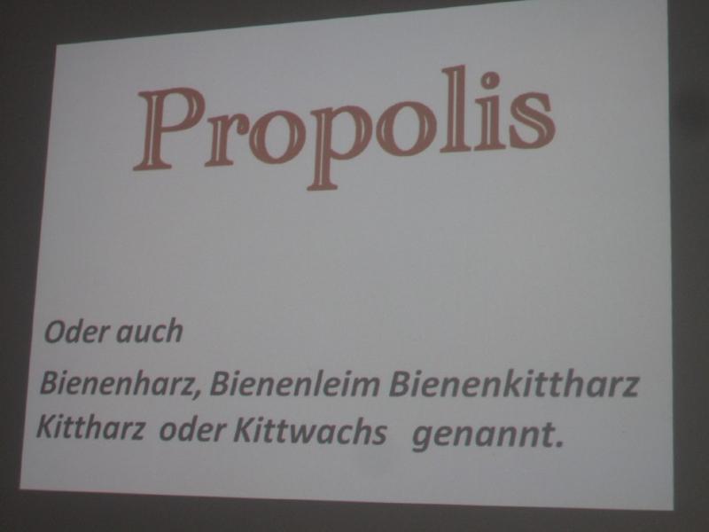 imker2012_Propolis