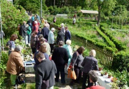 Kölner Pflanzentauschbörse im Frühling