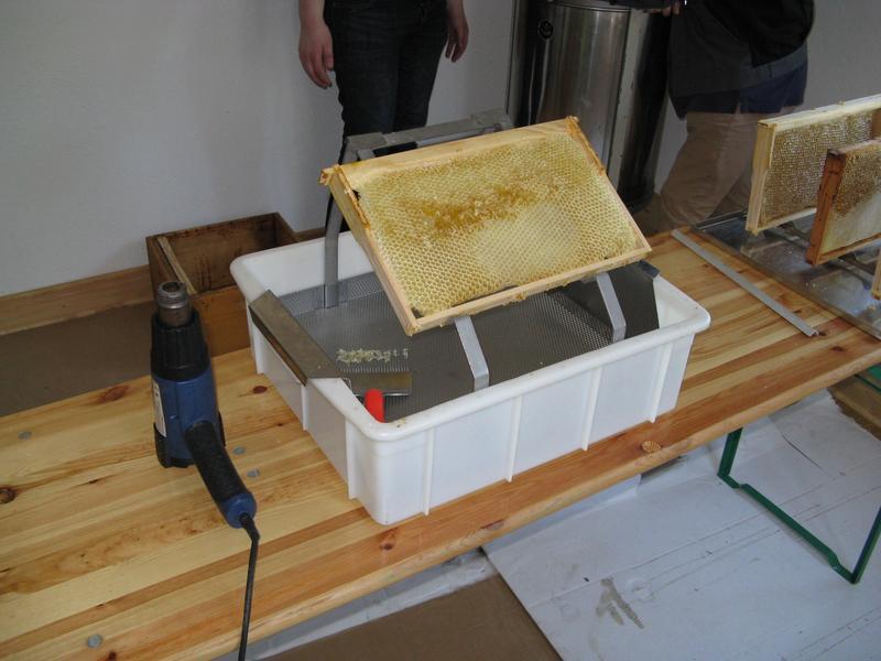 Honigwabe auf Entdeckelungsgeschirr
